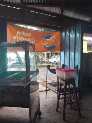 Ferry Terminal chicken shack